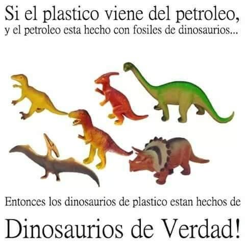 Jugar con dinosaurios de verdad, Amonite